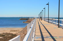 Wynnum Pier and Pandanus Beach