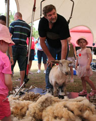 Wynnum Manly Australia Day Sheep Shearing